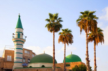 ISR0111 Israel, Akko. Minaret and domes of the Al Zaytuna Mosque surrounded by palm trees. Unesco