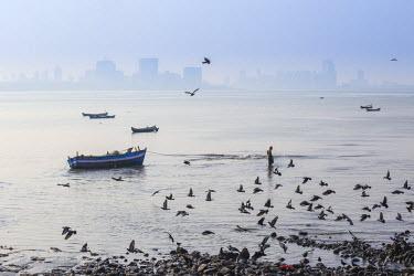 IN07138 India, Maharashtra, Mumbai, Chowpatty