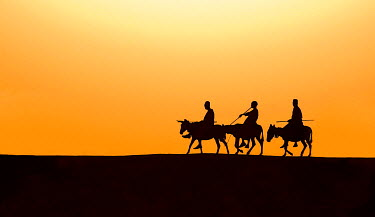 SUD1145AW Three Kurmuk men ride their donkeys home in the evening, South Sudan, Africa.