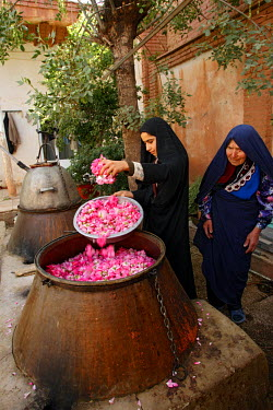 HMS0312763 Iran, Isfahan Province, Kashan, little distillery, filling up of the tank where roses are heated