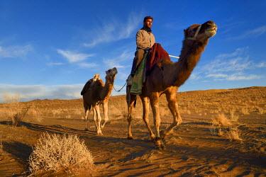 HMS2478414 Iran, Isfahan province, Dasht-e Kavir desert, Mesr in Khur and Biabanak County, man riding his camel in the desert at sunset