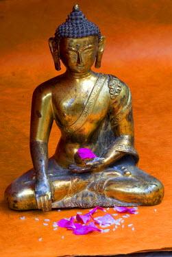 HMS0208224 Nepal, Kathmandu Valley listed as World Heritage by UNESCO, Kathmandu, statue, Divinity with offerings