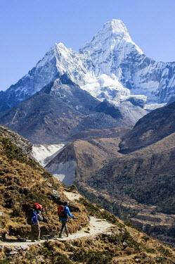 HMS0310458 Nepal, Sagarmatha National Park, Solu Khumbu District, Everest area, the Ama Dablam Mountain (6856m)