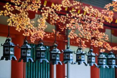 HMS0366932 Japan, Honshu Island, Kinki Region, city of Nara, Nara Park, lanterns