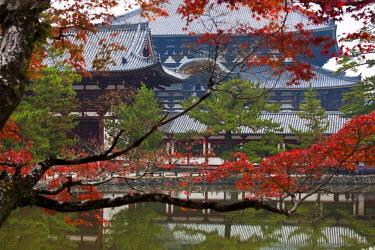 HMS0366946 Japan, Honshu Island, Kinki Region, city of Nara, Historic Monuments of Ancient Nara listed as World Heritage by UNESCO, Todai-ji Temple