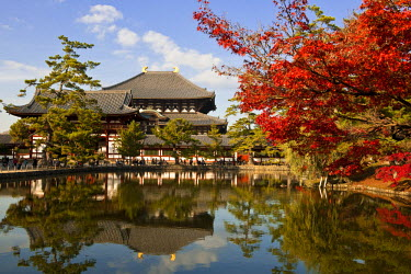 HMS0367023 Japan, Honshu Island, Kinki Region, city of Nara, Historic Monuments of Ancient Nara listed as World Heritage by UNESCO, the Daibutsu Den (Central Pavilion) of the Todai-ji Temple
