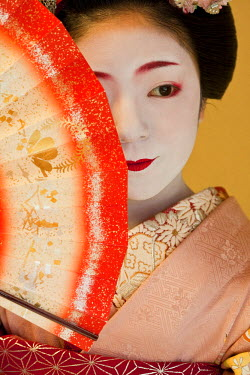HMS0464443 Japan, Honshu Island, Kinki region, Kyoto, geisha trainee called Maiko