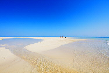 MAD0760 Africa, southern Madagascar, Anakao, Nosy Ve island