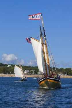 US03527 USA, Massachusetts, Cape Ann, Gloucester, America's Oldest Seaport, Gloucester Schooner Festival, schooner sailing ships