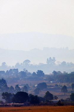 SWA0005 Swaziland, Mlilwane Wildlife Sanctuary, misty morning