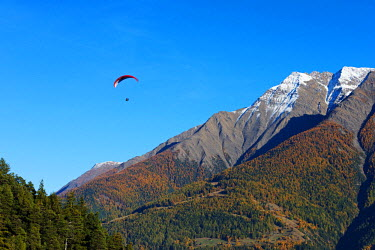 SWI7837 Europe, Switzerland, Valais, Swiss Alps, village of Termen near Brig