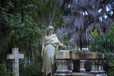US38117 Georgia, Savannah, Bonaventure Cemetery, Famous For Its Beautifully Appointed Tombs Adorned With Angelic Sculptures, Live Oaks, Hanging Moss