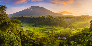 IDA0743AW Sidemen valley, Rendang, Karangasem Regency, Bali, Indonesia. Paddy fields with Gunung Agung (Mt Agung) volcano at sunrise.