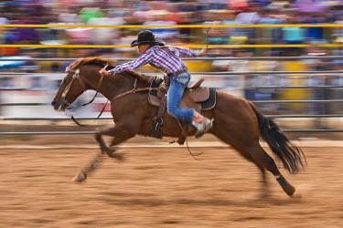 HMS2191636 United States, Arizona, Window Rock, Festival Navajo Nation Fair, rodeo