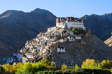 IND8275 India, Jammu & Kashmir, Ladakh, Chemrey. Founded in the 17th century, Chemrey Monastery, or gompa, stands perched on a hill overlooking Chemrey village.