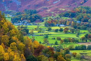 UK08044 UK, England, Cumbria, Lake District, Borrowdale on south bank of Derwentwater