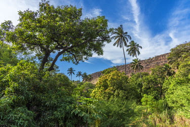 CVE0106AWRF africa, Cape Verde, Santiago Island. Hiking in a valley towards Cidade Velha.