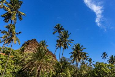 CVE0107AWRF africa, Cape Verde, Santiago Island. Hiking in a valley towards Cidade Velha.