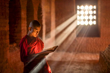 MYA2042AW Young burmese novice monk reading a book in a temple, Bagan, Mandalay region, Myanmar, (MR)