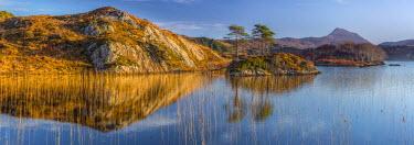 UK03376 UK, Scotland, Highland, Sutherland, Lochinver, Loch Druim Suardalain, Mount Canisp