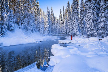CAN3144AW Woman in Winter Landscape, Emerald Lake, Yoho National Park, British Columbia, Canada