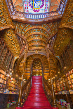 CLKAB53810 An old bookshop in Porto called Livraria Lello. Oporto city, Porto district, Portugal, Europe