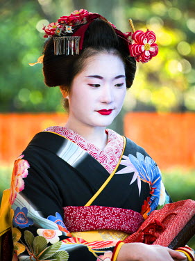 JAP1006AW Young Maiko with colorful Kimono and headdress, Gion, Kyoto, Japan