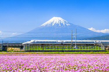 JAP1015AW Tokaido Shinkansen bullet train passing by Mount Fuji, Yoshiwara, Shizuoka prefecture, Japan