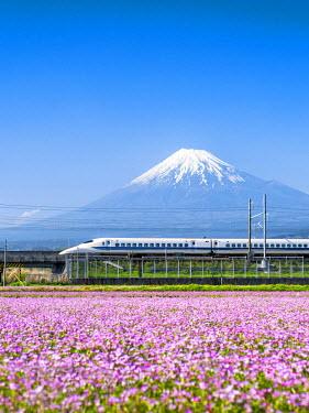 JAP1016AW Tokaido Shinkansen bullet train passing by Mount Fuji, Yoshiwara, Shizuoka prefecture, Japan