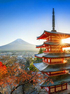 JAP1029AW Chureito Pagoda with Mount Fuji during autumn season, Fujiyoshida, Yamanashi prefecture, Japan