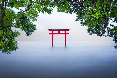 JAP1059AW Red torii gate at lake Ashinoko, Hakone, Kanagawa Prefecture, Honshu, Japan