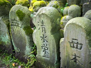 JAP1077AW Buddhist moss statue at the Otagi nenbutsu-ji, Arashiyama, Kyoto, Japan