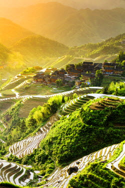 CH11223AW China, Guangxi Province, Longsheng, Long Ji rice terrace filled with water in the morning with Tiantou village in the background