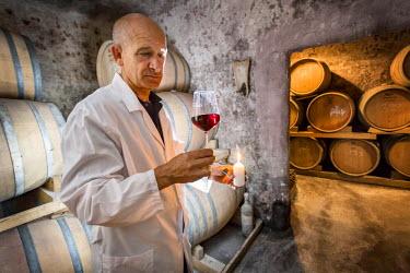 ITA10074AW Italia, Italy, Apulia, Puglia. Salento, Salentine Peninsula. Lecce District. Guagnano, San Donaci winery. Original cellar, Oenologist tasting wine.