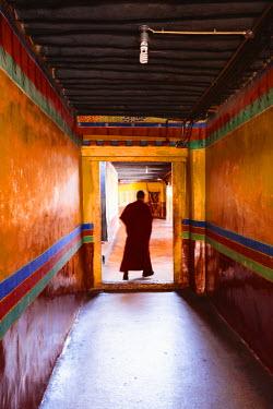 TIB0182AW Monk inside Jokang temple, Lhasa, Tibet, China