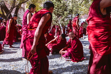 TIB0183AW Monks debating philosophy at Sera monastery, Lhasa, Tibet, China