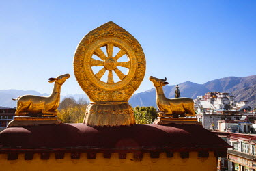 TIB0190AW The golden wheel of Dharma, Jokang  Lhasa, Tibet