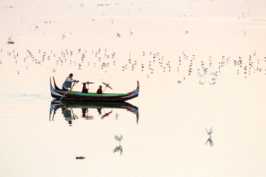 MYA2073AW A rowing boat  surrounded by birds carries two novice monks towards U-Bein bridge on Taungthaman Lake, Amarapura, Mandalay, Burma (Myanmar)