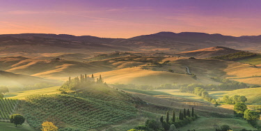 IT340RF Italy, Tuscany, San Quirico D'Orcia, Podere Belvedere (Typical Tuscan Farm)