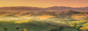 IT06687 Italy, Tuscany, San Quirico D'Orcia, Podere Belvedere (Typical Tuscan Farm)
