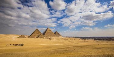 EG01353 Pyramids of Giza, Giza, Cairo, Egypt