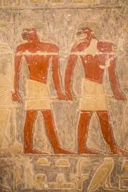 EG01387 Hyroglyphs in the Mastaba (tomb) of Kagemni (c. 2321-2290 B.C.) by the Pyramid of Teti, Saqqara, Nr Cairo, Egypt