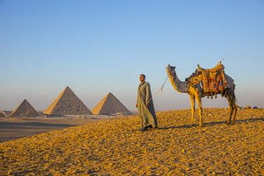 EG01414 Pyramids of Giza, Giza, Cairo, Egypt