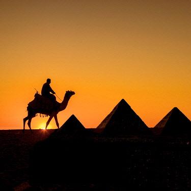 EG01424 Pyramids of Giza, Cairo, Egypt