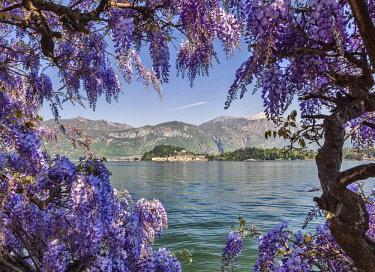 CLKAC25820 Italy, Lombardy, Como district. Como Lake, Bellagio seen from Cadenabbia