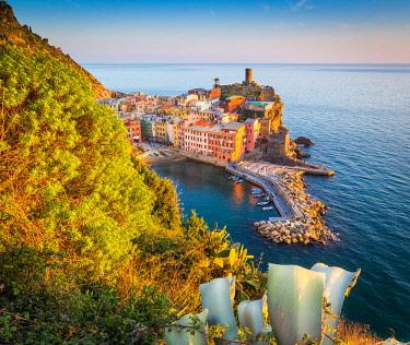 CLKST34604 Vernazza, Cinque Terre National Park, Liguria, Italy