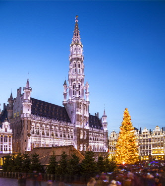 BEL1569 Belgium. Brussels Capital Region. Brussels. Light show at the Grand Place.