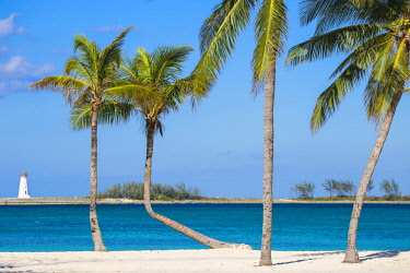 BA01357 Caribbean, Bahamas, Providence Island, Nassau, Palm trees on white sand beach with lighthouse in distance