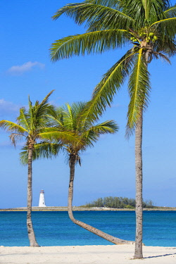 BA01358 Caribbean, Bahamas, Providence Island, Nassau, Palm trees on white sand beach with lighthouse in distance