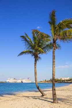 BA01409 Caribbean, Bahamas, Providence Island, Nassau, Palm trees on white sand beach, with cruise ship in distance